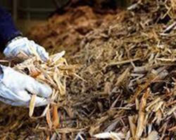 Infigroup - Marseille - Biomasse
